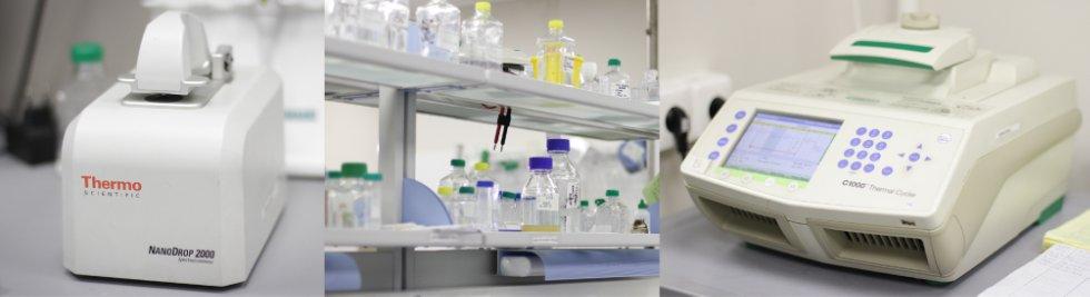 Портал КФУ \ Образование \ Институт фундаментальной медицины и биологии \ Кафедры и другие подразделения \ Центры превосходства САЕ \ Генные и клеточные технологии
