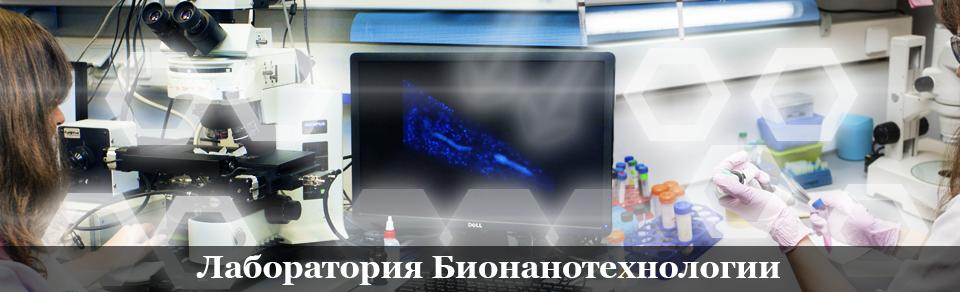 Портал КФУ \ Приоритетные направления \ Лаборатории \ САЕ