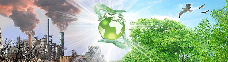 Портал КФУ \ Образование \ Институт экологии и природопользования \ Структура \ Учебный центр Дополнительных образовательных услуг