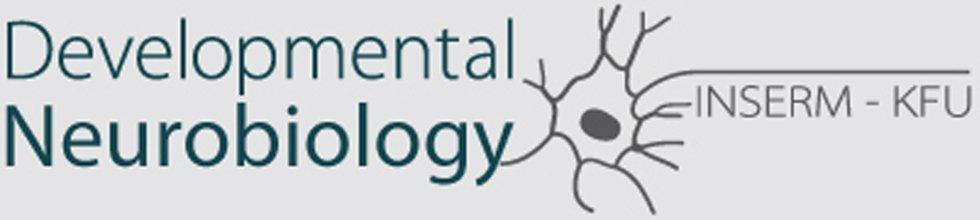 ПОРТАЛ КФУ \ Образование \ Институт фундаментальной медицины и биологии \ Структура института \ OpenLabs \ Нейробиология