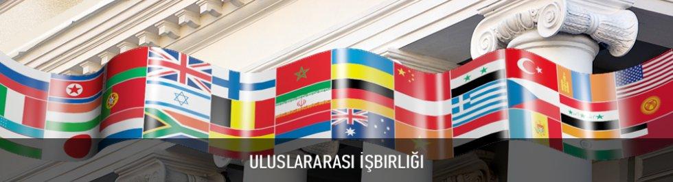 Портал КФУ \ Anasayfa \ Üniversite Hakkında \ Uluslararası İşbirliği