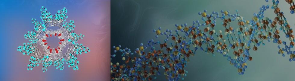 Магистратура 'Химия супрамолекулярных нано- и биосистем'