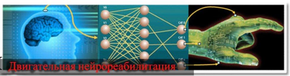 НИЛ 'Двигательная нейрореабилитация' ,Нейрореабилитация, спиной мозг, управление движениями