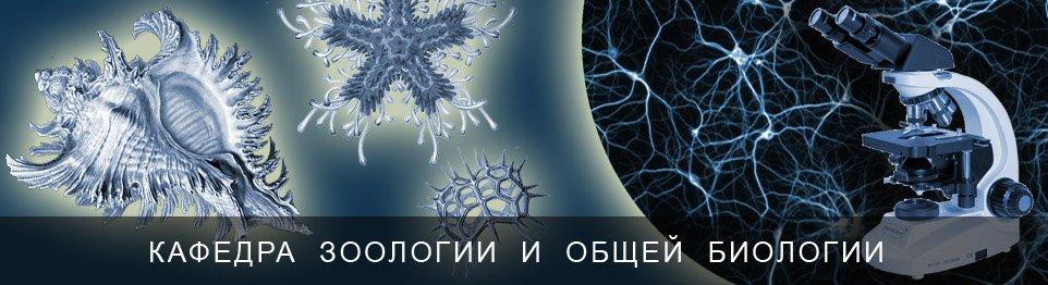 Портал КФУ \ Образование \ Институт фундаментальной медицины и биологии \ Кафедры и другие подразделения \ Кафедры \ Кафедра зоологии и общей биологии