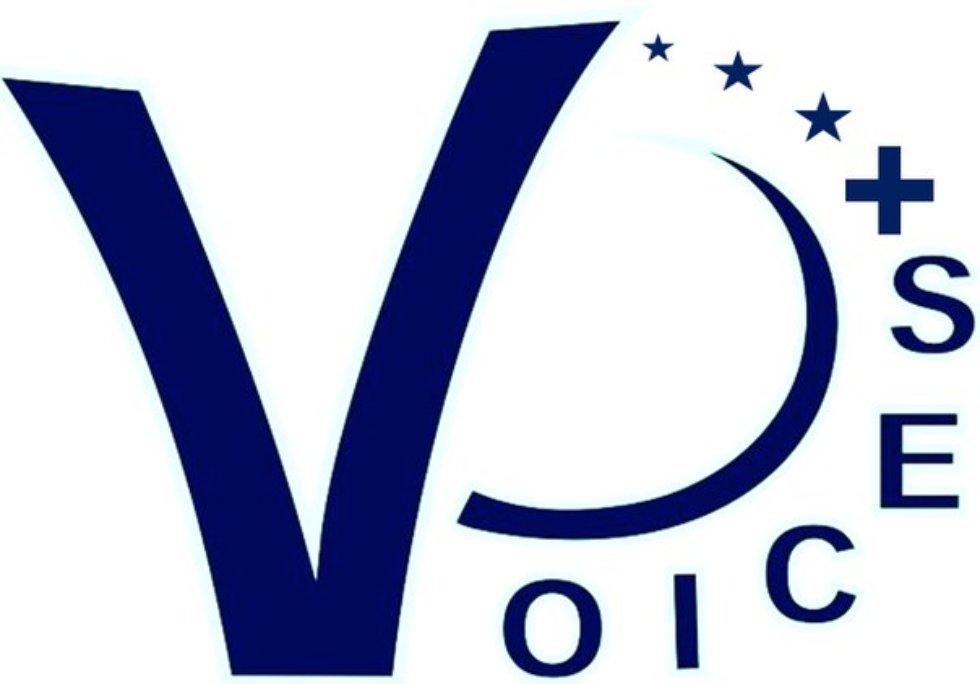 Международный Поволжский центр превосходства Жана Монне в области европейских исследований VOICES+