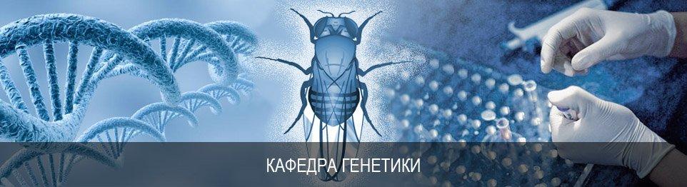 Портал КФУ \ Образование \ Институт фундаментальной медицины и биологии \ Кафедры и другие подразделения \ Кафедры \ Кафедра генетики