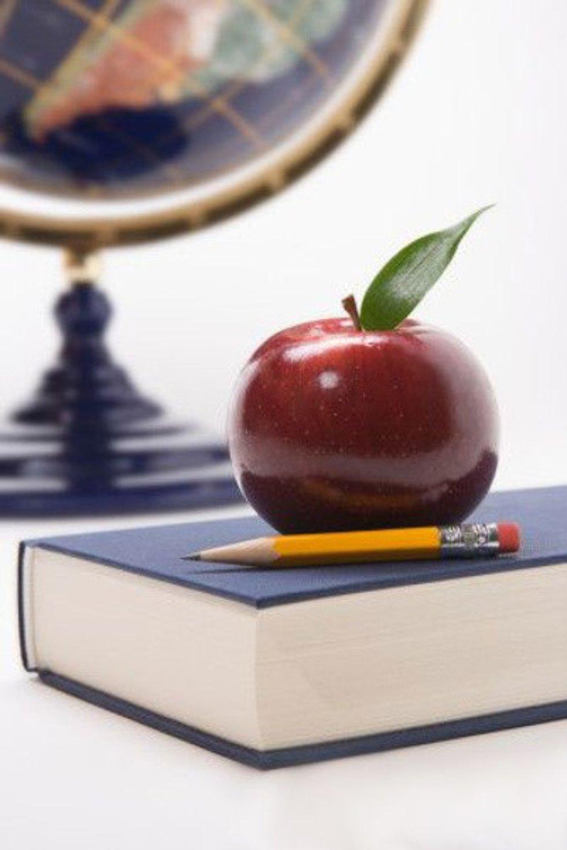 Учебный процесс ИСФНиМК ,образовательная деятельность, ИСФН, Екатерина Снарская