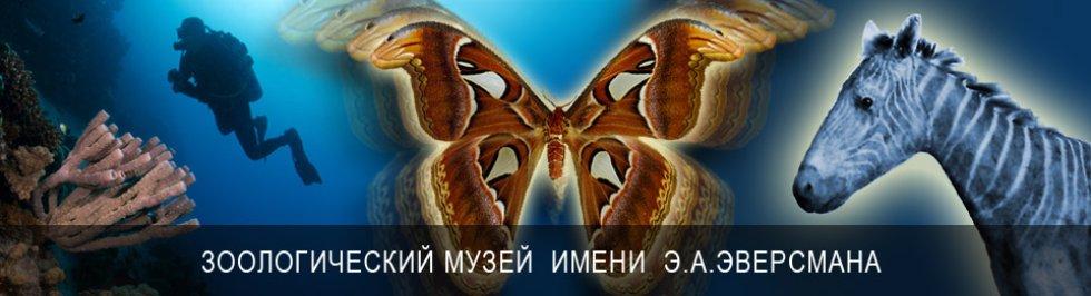 Портал КФУ \ Университет и общество \ Музеи \ Зоологический музей им. Э.А.Эверсмана
