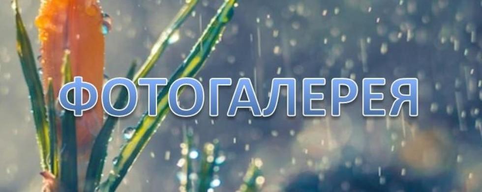 ПОРТАЛ КФУ \ Образование \ Институт экологии и природопользования \ Структура \ Метеорологическая обсерватория