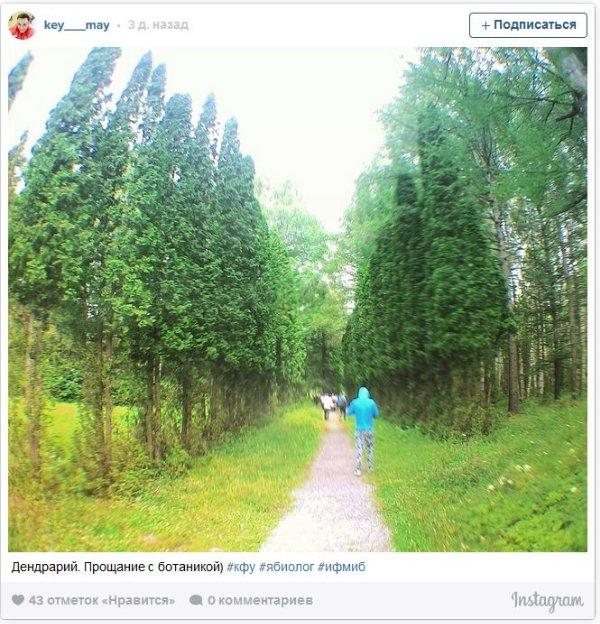 Интересныефото в лесу студенты