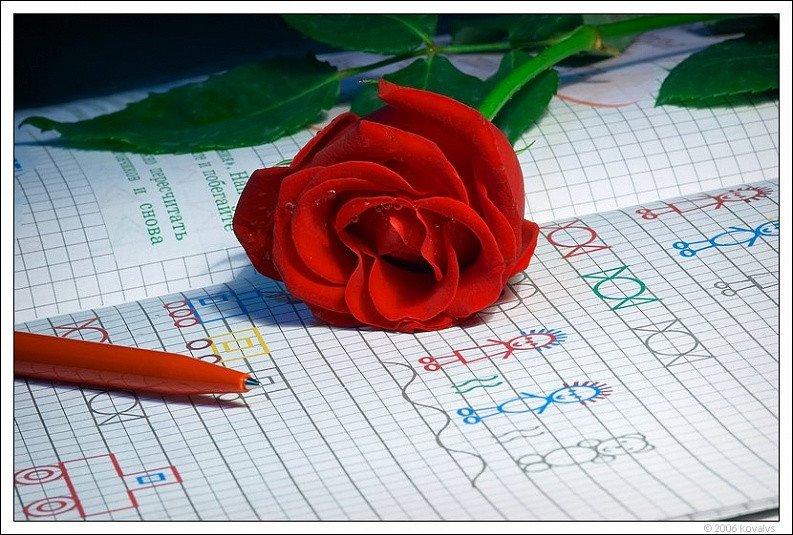 Открытки любовь и школу