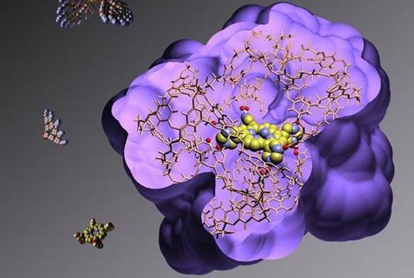 Химия супрамолекулярных нано- и биосистем ,Химия супрамолекулярных нано- и биосистем