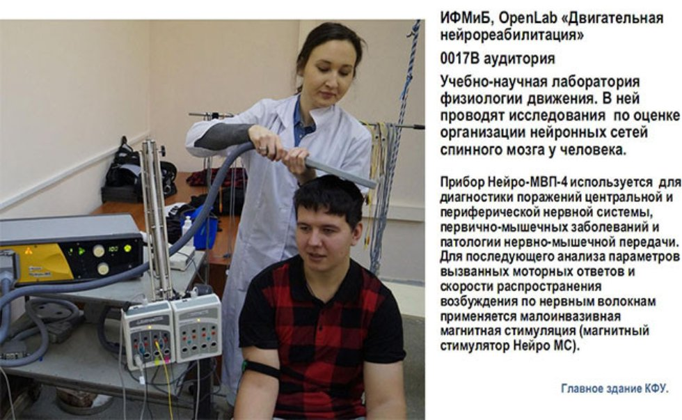 Галерея ,Locomotion, Spinal cord, Epidural stimulation, Intraspinal stimulation