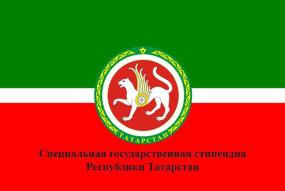 Отбор претендентов на назначение специальной государственной стипендии Республики Татарстан в 2017/18 учебном году ,Стипендия, специальной государственной стипендии РТ