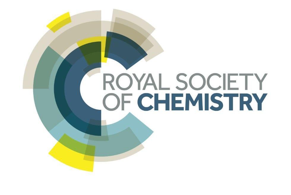 Ученый КФУ стал ассоциированным редактором британского журнала RSC Advances ,RSC Advances, НИЛ Бионанотехнологии, Равиль Фахруллин, Королевское химическое общество Великобритании
