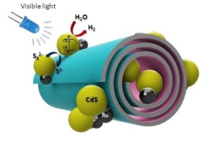Photo catalysts show promise in creating self-cleaning surfaces and disinfecting agents ,Boreskov Institute of Catalysis, Russian Oil and Gas University, Bionanotechnology Lab, IFMB